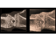 Реконструкция виртуального среза колена крысы, учитывающая только абсорбцию (слева), позволяет видеть четкое изображение микроархитектуры кости, но не окружающих ее мягких тканей. Виртуальный срез той же области с фазовым контрастом обнаруживает больше деталей мягких тканей, включая хрящ и сухожилия (справа).